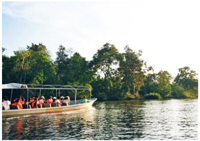 《預購暑假折2000》經典沙巴玩很大~馬慕迪浮潛、激流泛舟、高空飛索、長鼻猴生態、風味下午茶5日