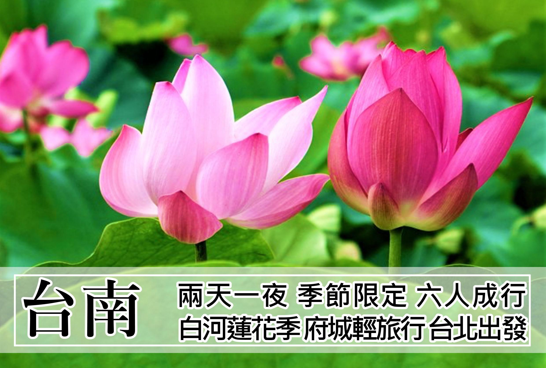 【台灣】台南~白河蓮花季、府城二日輕旅行
