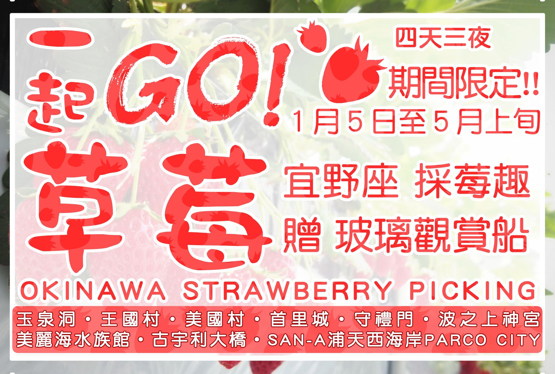 【沖繩】一起GO草莓 四天三夜 採莓趣
