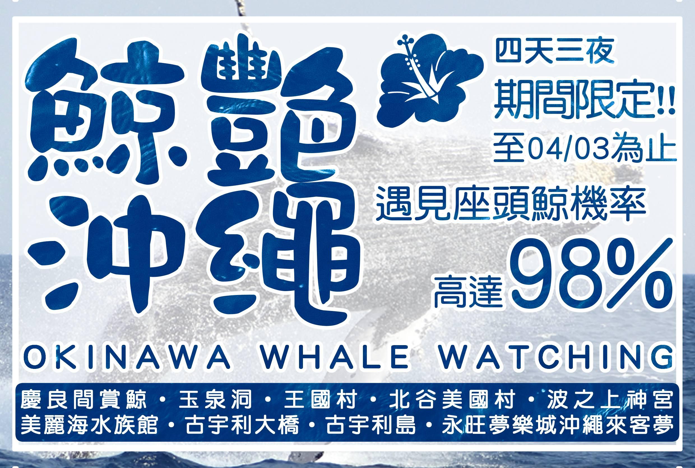【沖繩】鯨艷沖繩 四天三夜 賞鯨團
