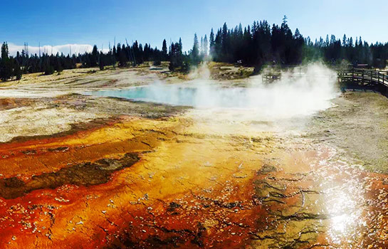 9 Days Los Angeles, Las Vegas, Yellowstone National Park (2 Nights)