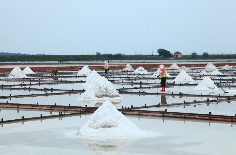 Beimen Jingzaijiao Pottery Shard Salt Fields