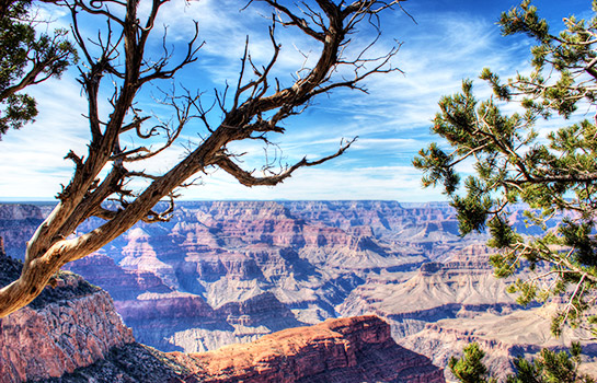 7 Days Los Angeles, Grand Canyon South Rim or West Rim, Las Vegas