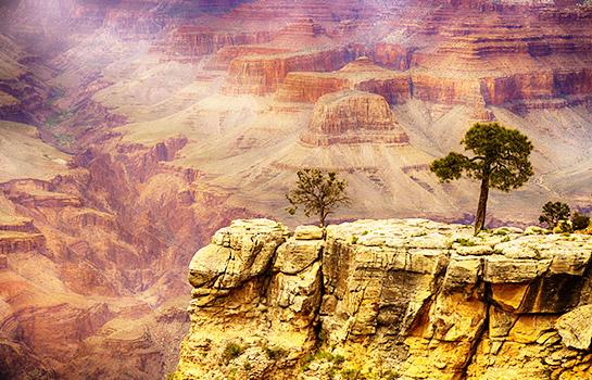 8日 優山美地, 國王峽谷, 美洲紅杉, 火焰谷, 死亡谷 或 大峽谷西緣, 拉斯維加斯, 洛杉磯
