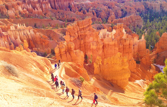 5 Days Antelope Canyon, Bryce Canyon, Zion National Park, Lake Powell, Las Vegas, Grand Canyon West Rim